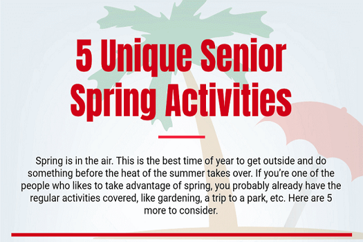 5 Unique Activities Seniors Can Do in the Springtime
